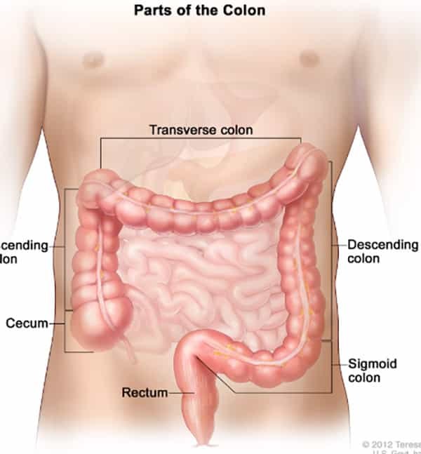 Colorectal Cancer Screening For Life Screening For Life